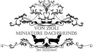 Von Z logo - Copy